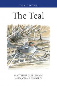 The Teal hi-res (2)